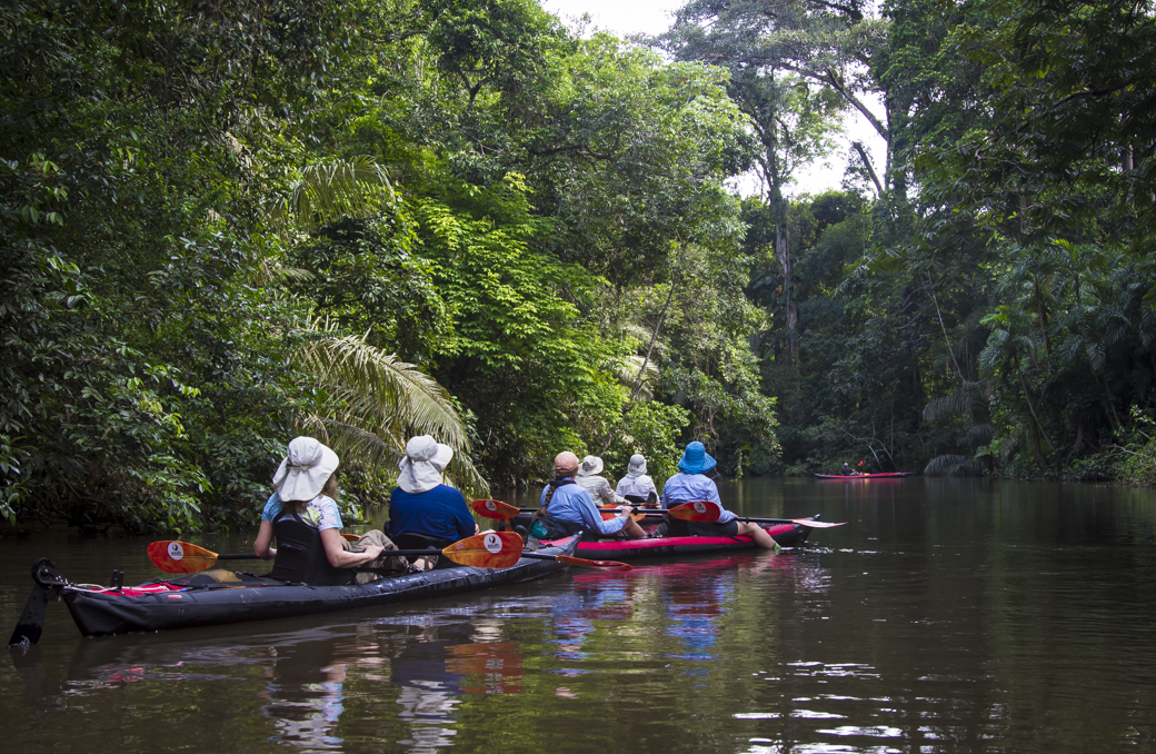 Group Kayaking on Amazon River Tributary