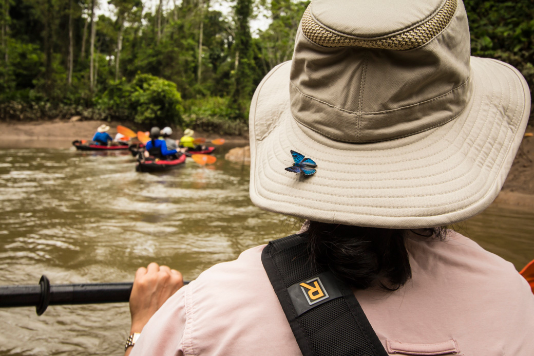 Butterfly hitching a ride while descending an Amazon river by kayak.