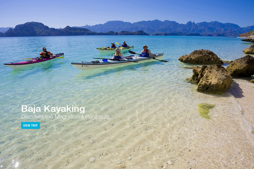 Baja Sea Kayaking Tour - Loreto