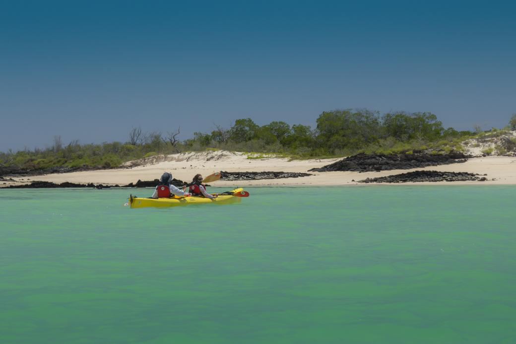 Galapagos Kayaking Tours Hotel Based Kayak Trips