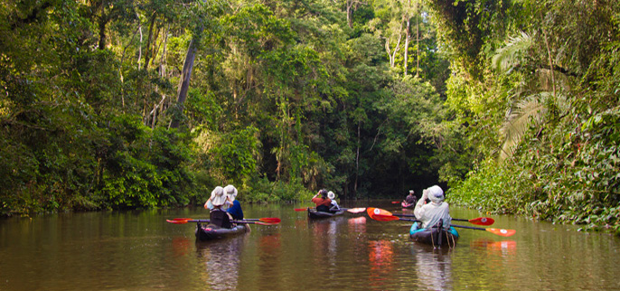 Amazon Kayaking Tours - Lodge to Lodge